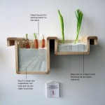 Ditch the Fridge – Innovation in the Kitchen